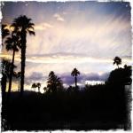 Photo A. Mosca California Notebooks